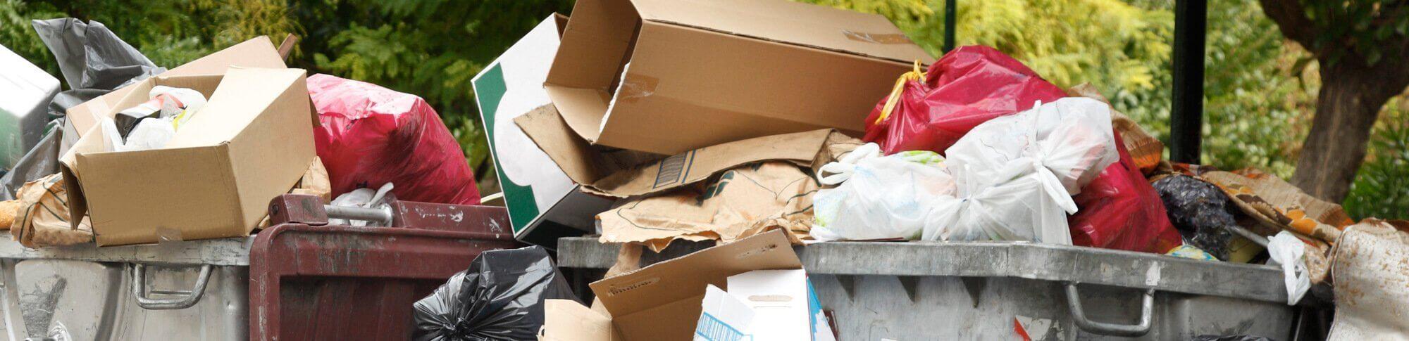 surviving a waste audit part 2 | max-r blog