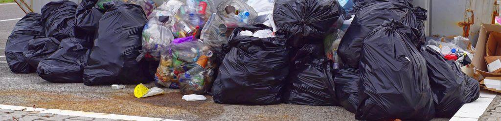 surviving a waste audit | max-r blog